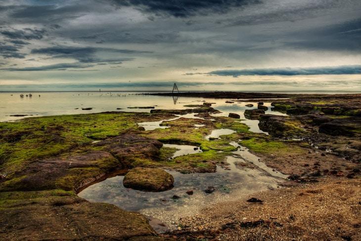 Melbourne-Daily-Photo-Blog-Bay-Beaumaris-birds-Point-Reef-Rickett-Rock-Sunset-Watkins-Beaumaris_20120724_001_2_3-2